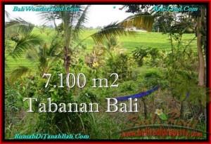 JUAL TANAH di TABANAN 71 Are View sawah dan Kebun
