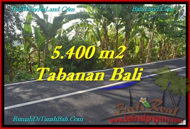 JUAL TANAH MURAH di TABANAN BALI 5,400 m2 View Kebun