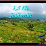 DIJUAL TANAH di TABANAN Untuk INVESTASI TJTB225