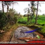TANAH di TABANAN DIJUAL MURAH 100 Are di Tabanan Selemadeg