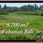 INVESTASI PROPERTI, TANAH MURAH DIJUAL di TABANAN BALI TJTB233