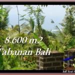 DIJUAL TANAH di TABANAN Untuk INVESTASI TJTB235