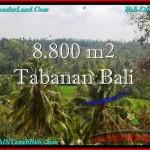 JUAL MURAH TANAH di TABANAN BALI 88 Are View laut, Sawah dan Gunung