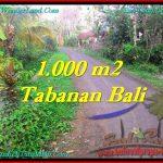 TANAH di TABANAN BALI DIJUAL MURAH Untuk INVESTASI TJTB242