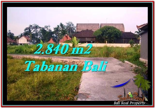 TANAH MURAH JUAL di TABANAN BALI 2,840 m2 View sawah