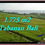 DIJUAL TANAH di TABANAN 1,775 m2 di Tabanan Selemadeg