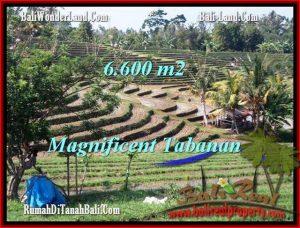 JUAL TANAH di TABANAN 6,600 m2  View Gunung sawah dan laut