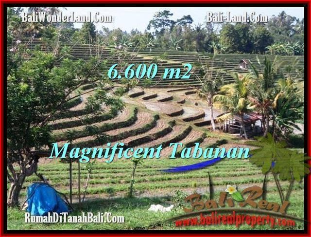 JUAL TANAH MURAH di TABANAN 66 Are View Gunung sawah dan laut
