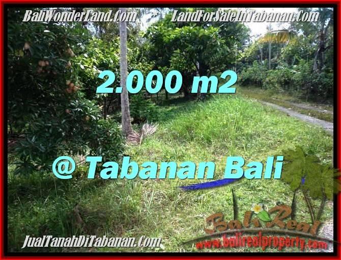 TANAH MURAH JUAL di TABANAN BALI 20 Are View Kebun