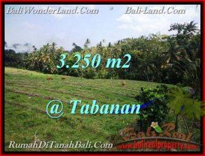 TANAH di TABANAN BALI DIJUAL MURAH Untuk INVESTASI TJTB208