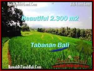 JUAL TANAH MURAH di TABANAN 2,300 m2  View Gunung dan sawah