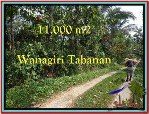 TANAH DIJUAL MURAH di TABANAN TJTB213