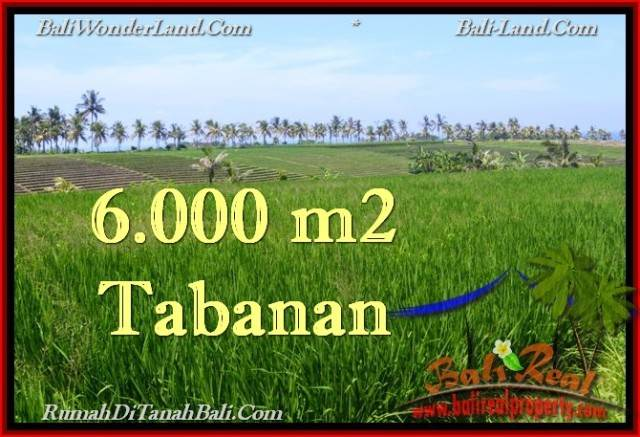 TANAH MURAH di TABANAN BALI TJTB267