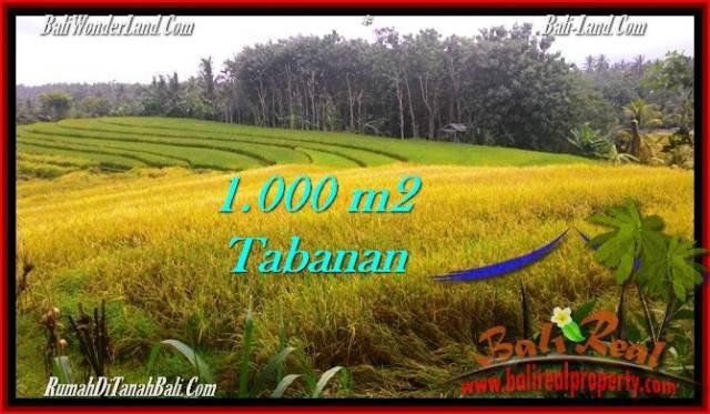 INVESTASI PROPERTY, JUAL TANAH MURAH di TABANAN BALI TJTB273