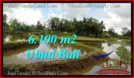 TANAH MURAH DIJUAL di UBUD Untuk INVESTASI TJUB547
