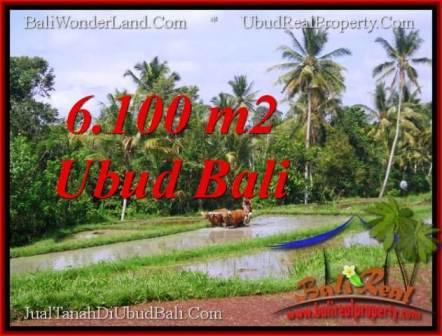 TANAH MURAH JUAL di UBUD BALI 61 Are View Sawah lingkungan villa