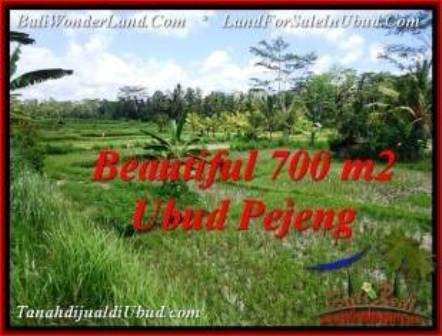 JUAL TANAH MURAH di UBUD BALI 700 m2 di Ubud Pejeng