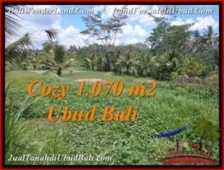 JUAL TANAH di UBUD 1,070 m2 View Sawah dan kebun