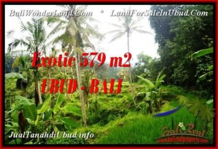 TANAH di UBUD BALI DIJUAL MURAH 579 m2 di Ubud Tegalalang