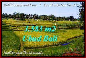 TANAH MURAH DIJUAL di UBUD BALI TJUB542