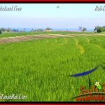 DIJUAL TANAH di TABANAN 6,000 m2 di Tabanan Selemadeg