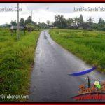 JUAL TANAH MURAH di TABANAN Untuk INVESTASI TJTB269
