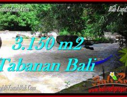 TANAH di TABANAN JUAL MURAH 3,150 m2 View kebun dan sungai