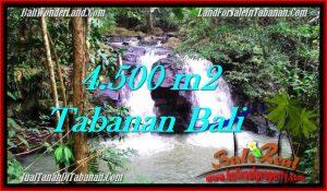 TANAH di TABANAN JUAL MURAH 45 Are View Sawah dan Sungai