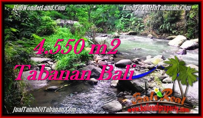 TANAH di TABANAN BALI DIJUAL MURAH 45.5 Are View kebun dan sungai