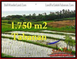 INVESTASI PROPERTY, JUAL TANAH MURAH di TABANAN TJTB264