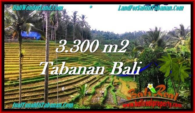 JUAL MURAH TANAH di TABANAN BALI 3,300 m2 View Sawah dan Kebun