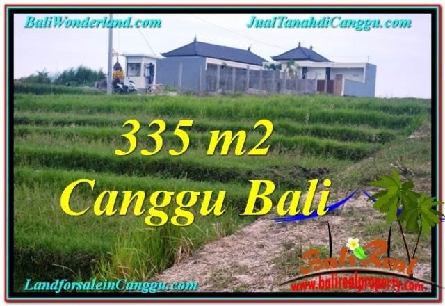 DIJUAL TANAH MURAH di CANGGU 3.35 Are di Canggu Umalas