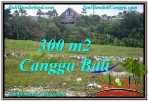 TANAH di CANGGU BALI DIJUAL 300 m2 View sawah lingkungan villa
