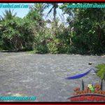 TANAH MURAH JUAL di TABANAN BALI 800 m2 Tepi Pantai ( Beachfront ) View Sawah
