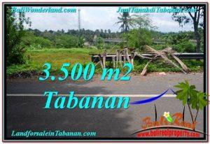 JUAL TANAH MURAH di TABANAN BALI 3,500 m2  View kebun