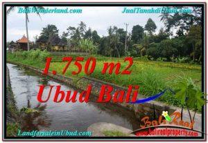 JUAL TANAH MURAH di UBUD 715 m2  View Sawah dan sungai