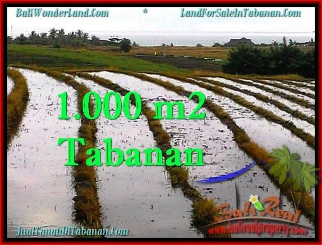 JUAL TANAH di TABANAN 10 Are View sawah, gunung dan laut
