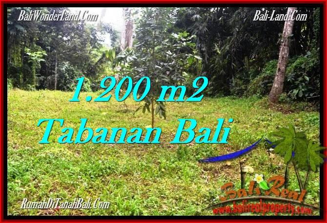 TANAH MURAH DIJUAL di TABANAN BALI 12 Are di Tabanan Penebel