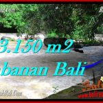 TANAH di TABANAN DIJUAL MURAH TJTB282