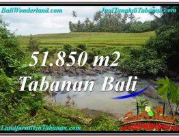 TANAH DIJUAL MURAH di TABANAN 518.5 Are di Tabanan Selemadeg
