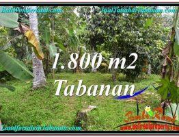 DIJUAL TANAH di TABANAN BALI Untuk INVESTASI TJTB293