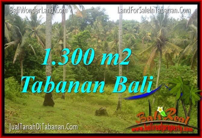JUAL MURAH TANAH di TABANAN BALI 1,300 m2 View laut dan sawah