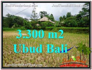 JUAL TANAH di UBUD BALI 33 Are View kebun dan sawah