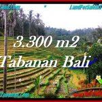 INVESTASI PROPERTI, TANAH MURAH DIJUAL di TABANAN TJTB274
