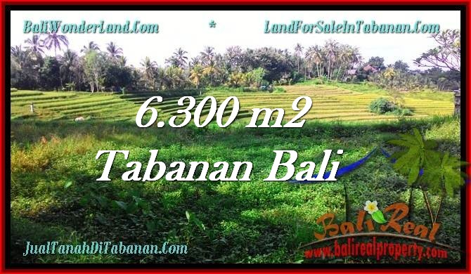 DIJUAL MURAH TANAH di TABANAN BALI 63 Are di Tabanan Selemadeg