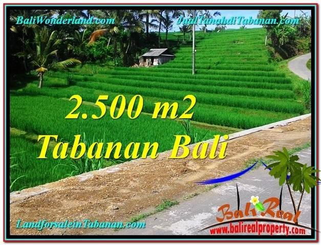 TANAH DIJUAL MURAH di TABANAN TJTB305