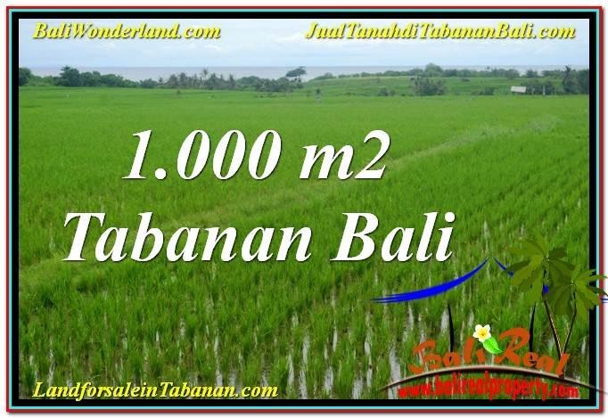 TANAH MURAH DIJUAL di TABANAN BALI Untuk INVESTASI TJTB307