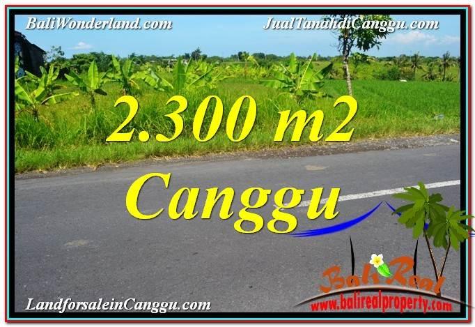 TANAH DIJUAL di CANGGU 2,300 m2 di Canggu echo beach