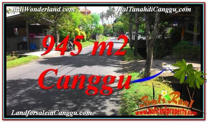 TANAH MURAH di CANGGU DIJUAL 9.45 Are di Canggu Pererenan