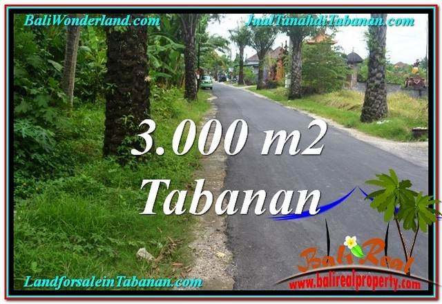TANAH di TABANAN BALI DIJUAL MURAH 3,000 m2 di Tabanan Kerambitan
